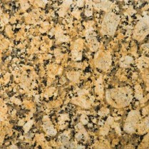 "Copy of Giallo Fiorito Granite 12""x12"" Tile - One Side Bullnosed"