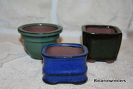 Mini Bonsai Containers