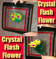 Crystal Flash Flower - Feather