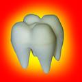 "3"" Foam (Sponge) Tooth for Magic Tricks"