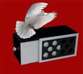 Silver Holed Drawer Box by Tora Magic