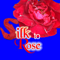 Silk to Rose - Reel
