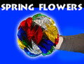 "8"" Mylar Spring Flowers Bouquet"