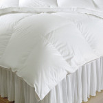 DownTown Company Sweet Dream Hungarian Down Winter Comforter