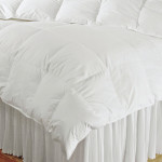 DownTown Company Villa European Down Year Round Comforter