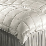 DownTown Company Willow Siberian Down Summer Comforter