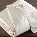 DownTown Company Savoy Silk Filled Silk Comforter