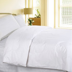 Cotton Loft Comforter