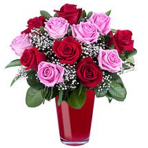 DOZEN LOVE BLESSINGS ROSES