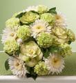 March's Bouquet