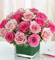 Expressions of Pink (Small)
