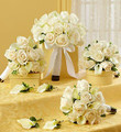 Bridal Party Personal Package in White