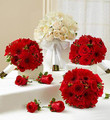 Briday Party Personal Package Red with White Bridal Bouquet