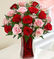 Shades of Pink and Red 18 Stems