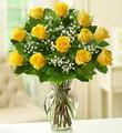 Rose Elegance Premium Long Stem Yellow Roses