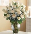 Ultimate Elegance Premium Long Stem White Roses
