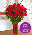 Two Dozen Premium Long-Stem Red Roses