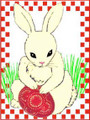 *CROATIAN EASTER CARDS ~ BUNNY  ~ Exclusively Designed for Heart of Croatia Gifts