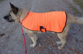 Safety jackets (orange) for dogs