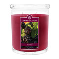 Mulberry 22 oz Scented Oval Jar Candles
