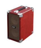 Phil Jones Airpulse AG-100 Acoustic Guitar Amplifier front isometric