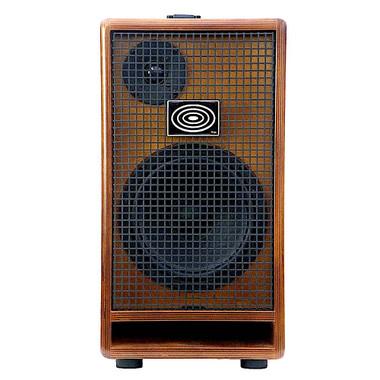 Schertler LaFaro Double Bass Amplifier dedicated to Scott LaFaro SOUNDISLANDMUSIC.COM