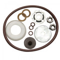 Seal and Gasket Kit with Viton®
