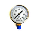 "302 - S.S. Bottom Mount Pressure Gauge, 1/4"", 0-600 PSI"