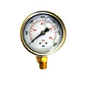 "306 - S.S. Bottom Mount Pressure Gauge, 1/4"", 0-6000 PSI"