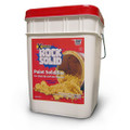 XSORB Rock Solid Paint Hardener Pail 4 gal. with Scoop