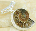 Ammonite Pendant 010