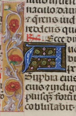 detail-add-ms-18852-f16v.jpg