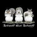 Birdseed? What Birdseed? T-Shirt