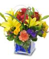 Colorful Fresh Floral Arrangement