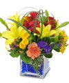Colorful Fresh Floral Arrangement