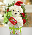 Christmas Floral Puppy 004