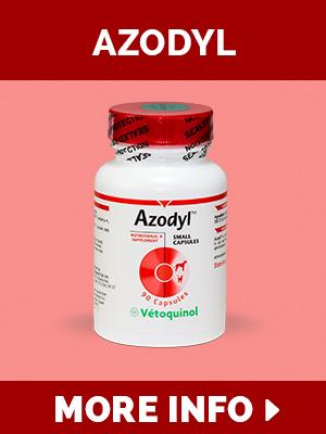 azodyl-copy.jpg