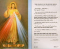 Chaplet of Divine Mercy Laminated Holy Card