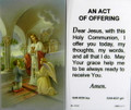 Communion Boy An Act of Offering Laminated Holy Card