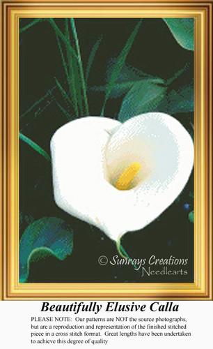 Beautifully Elusive Calla, Flowers Counted Cross Stitch Pattern