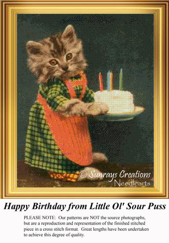Happy Birthday from Little Ol' Sour Puss, Vintage Cross Stitch Pattern