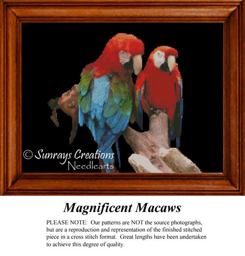 Magnificent Macaws, Animal Cross Stitch Pattern