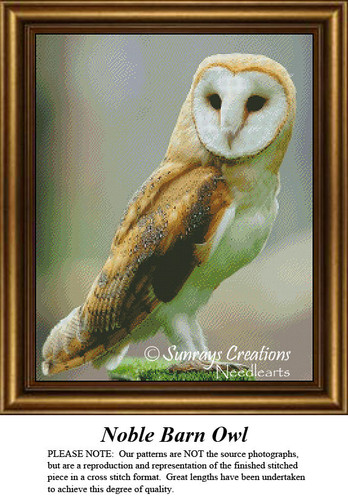 Owl Cross Stitch Patterns | Noble Barn Owl