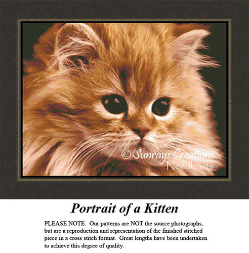 Animal Cross Stitch Patterns | Portrait of a Kitten