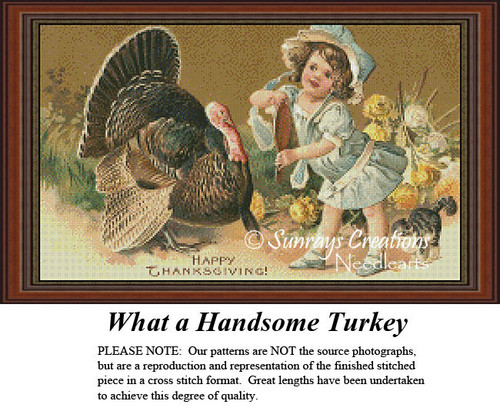 Vintage Cross Stitch Patterns | What a Handsome Turkey