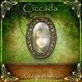 CICCADA-A CHILD IN THE MIRROR-GREEK Prog Rock,Folk Rock,Psych-NEW CD