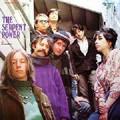 SERPENT POWER-SERPENT POWER-'67 psychedelic folk-rock-new LP