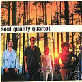 Soul Quality Quartet-Dip-jazz-funk/soul fusion-new 2LP