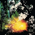 Del Rey-Immemorial-Post Rock-NEW CD PROMO