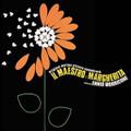 Ennio Morricone-Il Maestro e Margherita-'72 OST-NEW CD